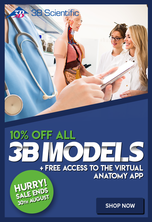 3B Scientific Anatomical Models Promotion