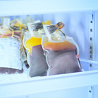 How to Refrigerate Vaccines to Prevent Contamination During Flu Season