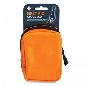 Glove Box First Aid Kit in Borsa Bag