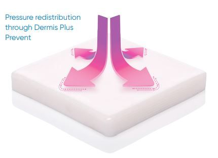 How Does DermisPlus Work?