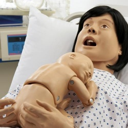 Basic Lucy Maternal and Neonatal Birthing Simulator