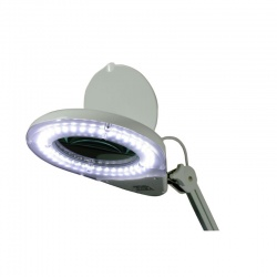 Daray Professional LED Magnifying Light