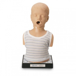 Child Heart and Lungs Sound Trainer