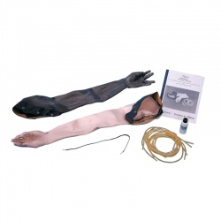 Skin and Vein Replacement Kit for Advanced Venipuncture and Injection Arm